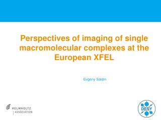 Perspectives of imaging of single  macromolecular complexes  at the European XFEL