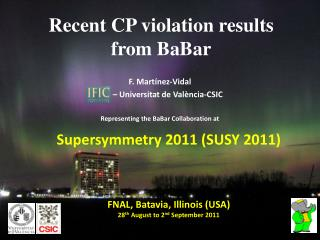 Recent CP violation results from  BaBar