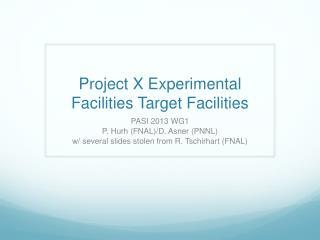 Project X Experimental Facilities Target Facilities