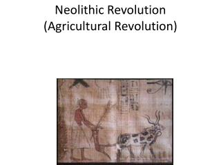 Neolithic Revolution (Agricultural Revolution)