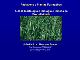 Pastagens e Plantas Forrageiras Aula 3. Morfologia ...