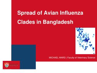 Spread of Avian Influenza  Clades  in Bangladesh