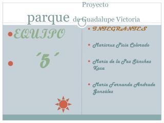 Proyecto  parque  de Guadalupe Victoria