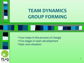 TEAM DYNAMICS  GROUP FORMING