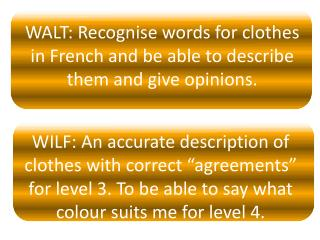 WALT:  Recognise  words for clothes in French and be able to describe  them and give opinions.