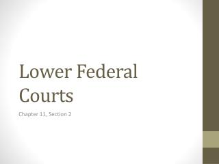 Lower Federal Courts