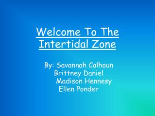 Welcome To The  Intertidal Zone