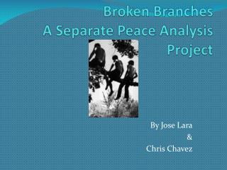 Broken Branches A Separate Peace Analysis Project