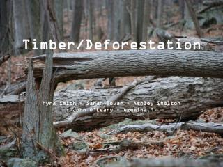 Timber/Deforestation