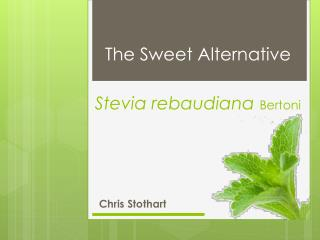 Stevia  rebaudiana Bertoni