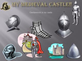 My medieval castle !!