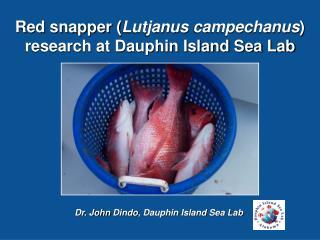 Dr. John  Dindo , Dauphin Island Sea Lab