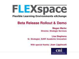 Beta Release Rollout & Demo
