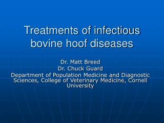 Treatments of infectious bovine hoof diseases