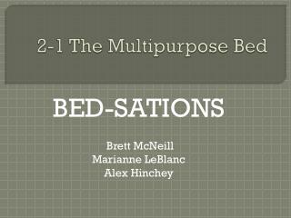 2-1 The Multipurpose Bed