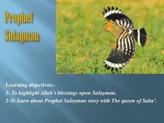 Prophet  Sulayman