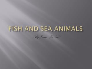 Fish and sea animals