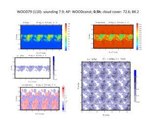 WOOD79  (110):  sounding 7.9;  AP:  WOODconst ;  0.5 h ;  cloud cover :  7 2.6 ; 84.2
