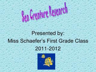 Sea Creature Research