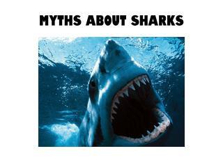 Myths about Sharks