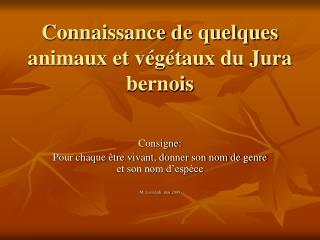 Connaissance de quelques animaux et végétaux du Jura bernois