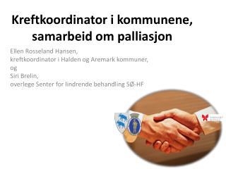 Kreftkoordinator i kommunene, samarbeid om palliasjon