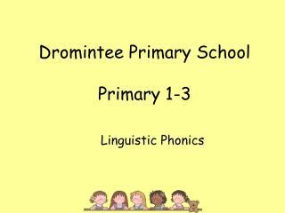 Dromintee Primary School Primary 1-3