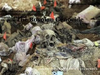The Bosnian Genocide
