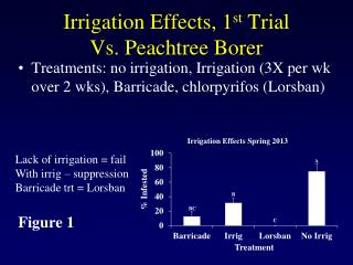 Irrigation Effects, 1 st Trial Vs. Peachtree Borer