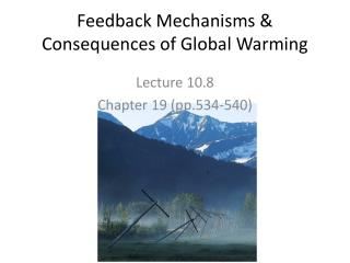 Feedback Mechanisms & Consequences of Global Warming