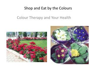 Shop and Eat by the Colours
