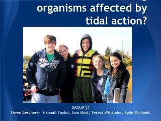 How are fouling organisms affected by tidal action?