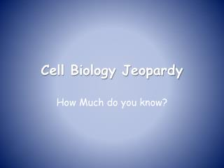 Cell Biology Jeopardy