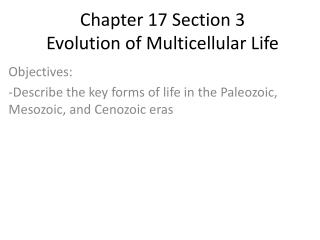 Chapter 17 Section 3 Evolution of Multicellular Life