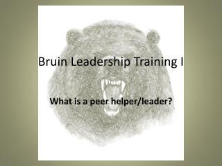 Bruin Leadership Training I