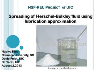 NSF-REU  Project  at UIC