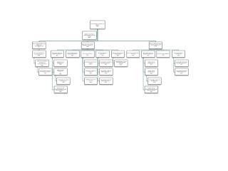 Organigrama USI
