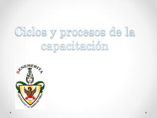 Ciclos y procesos de la capacitación