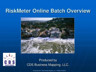 RiskMeter Online Batch Overview