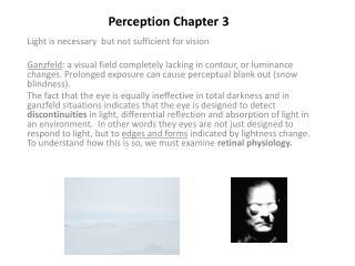 Perception Chapter 3