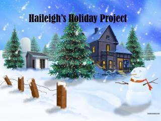 Haileigh�s Holiday Project