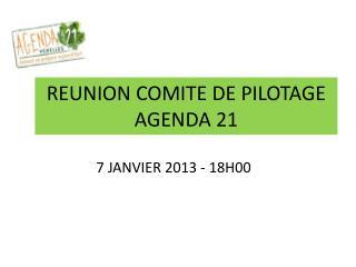 REUNION COMITE DE PILOTAGE AGENDA 21