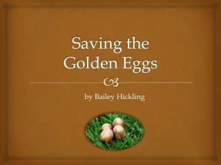 Saving the  Golden Eggs