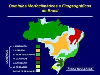 DOM�NIOS MORFOCLIM�TICOS DO BRASIL