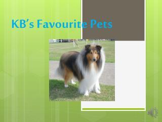KB's Favourite Pets