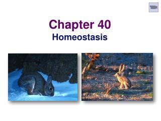 Chapter 40 Homeostasis