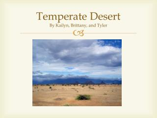 Temperate Desert By  Kailyn , Brittany, and Tyler