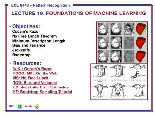 LECTURE  19:  FOUNDATIONS OF MACHINE LEARNING