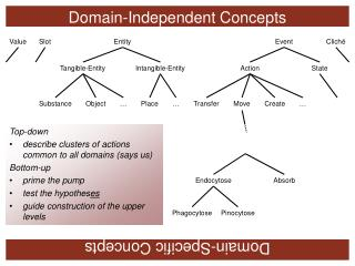 Domain-Independent Concepts