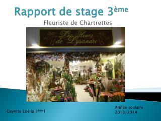 Rapport de stage 3 ème